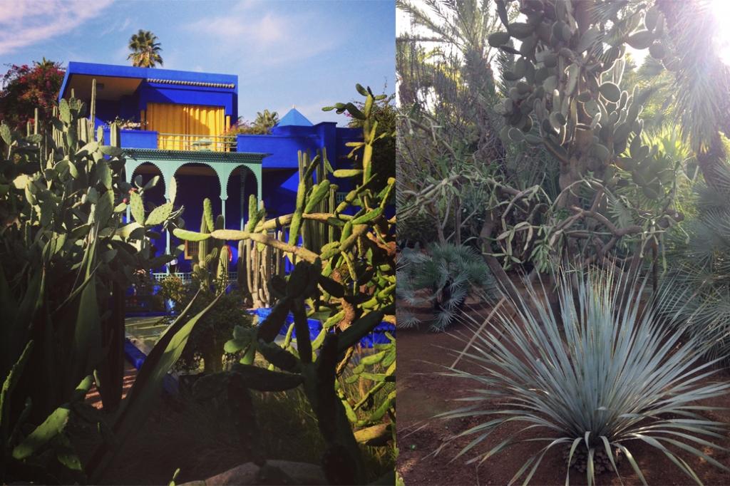 smartvolta-volta-smart-places-jardin-majorelle1afa