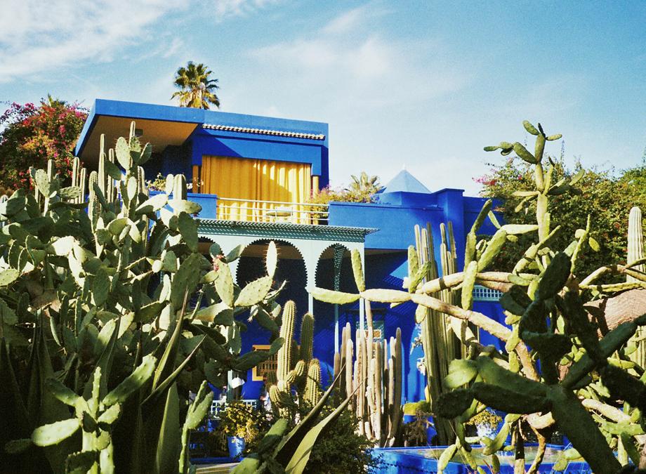 Jardin Majorelle Smartvolta Conscious Living Healthy Lifestyle For