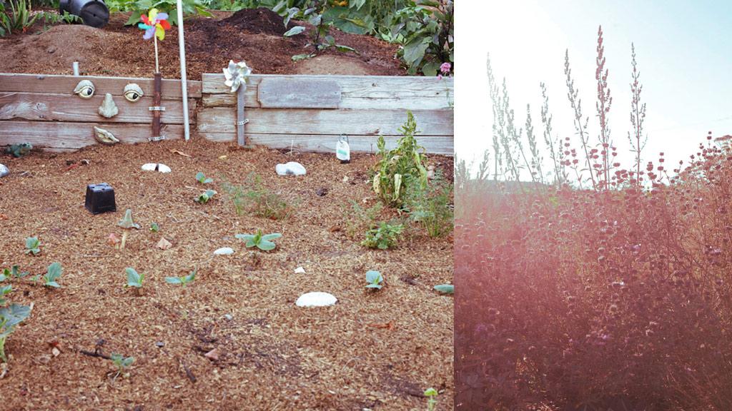 smartvolta-volta-smart-places-la-organic-garden1