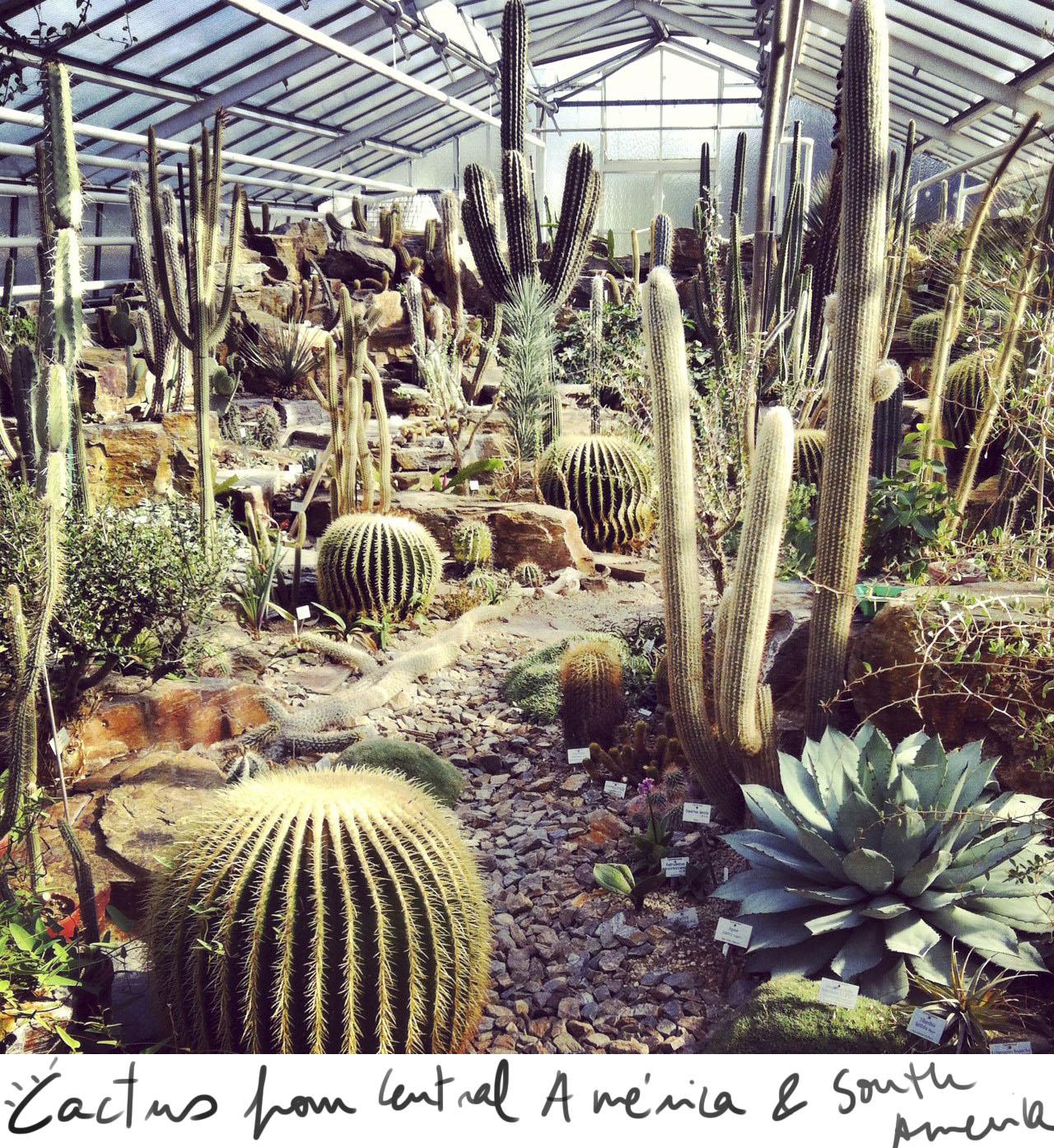 smartvolta-volta-smart-places4-botanic-garten-munchen
