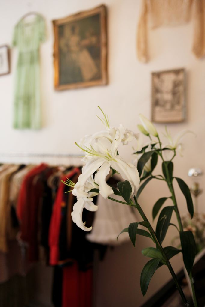 smartvolta-volta-smart-places-vintage-ny-rosebud-_1411