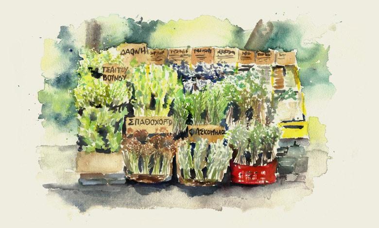 smartvolta-volta-smart-places-organic-herbs4